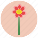 ecology, floral, flower, nature, plant icon
