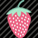 food, fruit, healthy food, raw food icon