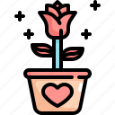 flower, love, pot, romance, rose, valentine, valentines icon
