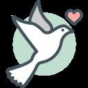 bird, love icon