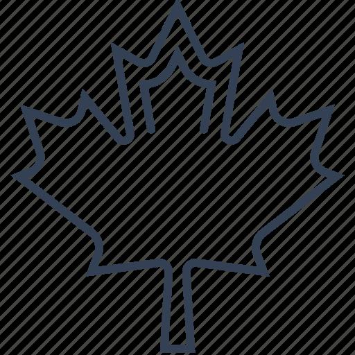 leaf, maple, vankuver icon