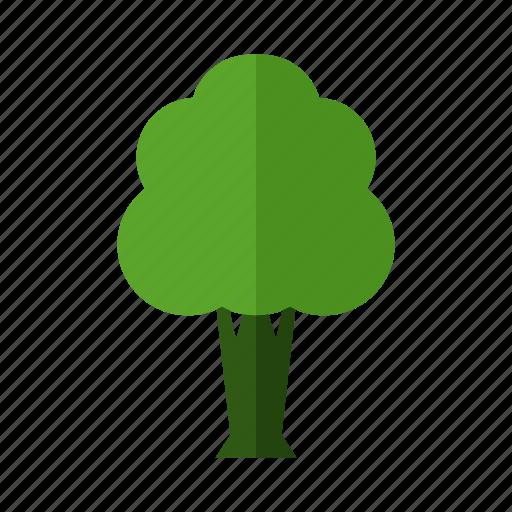 design, green, land, nature, tree icon