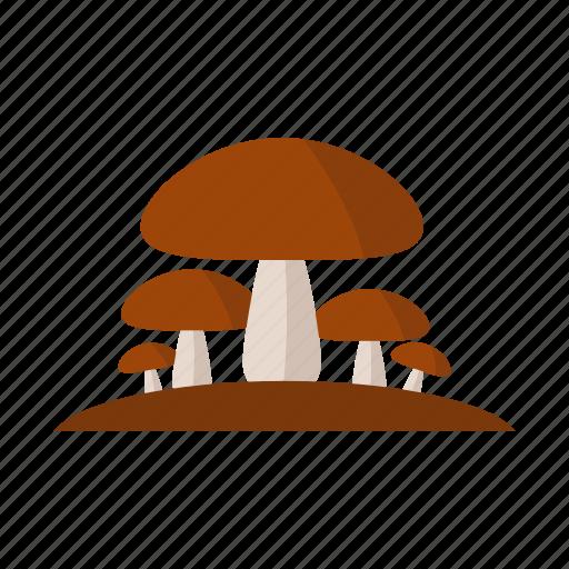 design, food, mushroom, nature, plant icon