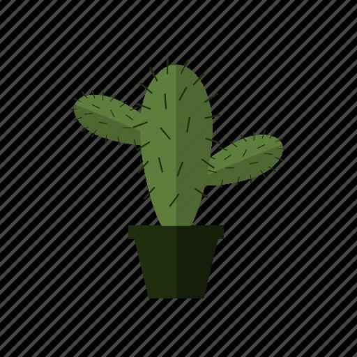 cactus, design, green, land, nature, plant icon