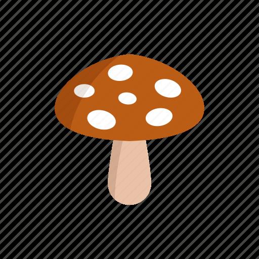 design, food, land, mushroom, nature, plant icon