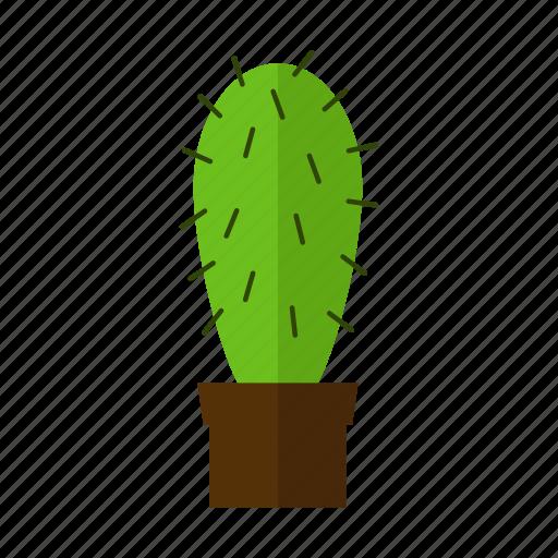 cactus, design, land, nature, plant icon