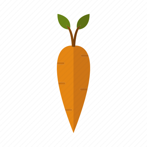 carrot, design, food, nature, plant icon