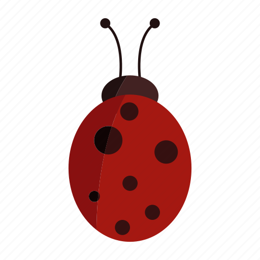 animal, design, insect, ladybug, red icon