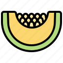 crops, fruit, pumpkin, slice, vitamin icon