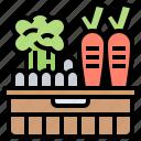 basket, crops, farm, harvest, vegetable icon