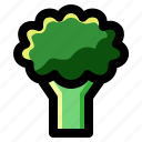 broccoli, food, fresh, health, healthy, organic, vegetable