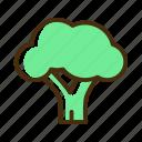 brocoli, food, green, healthy, organic, vegetarian icon