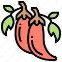 chili, cooking, hot, ingredient, spicy icon