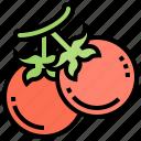fresh, organic, tomato, vegetable, vitamin icon