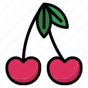 berry, cherry icon