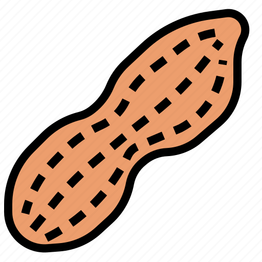 nut, peanut icon