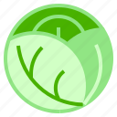 cabbage, lettuce, salad, vegan icon