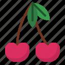 berry, cherry