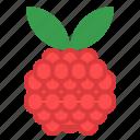 berry, dessert, fruit, pile, rasberries icon
