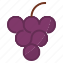 berry, grape icon