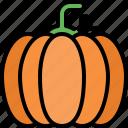 pumpkin, vegetable, organic food, healthy, vegetarian, vegan, nutrition