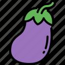 eggplant, vegetable, organic food, healthy, vegetarian, vegan, nutrition
