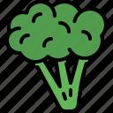 broccoli, vegetable, organic food, healthy, vegetarian, vegan, nutrition