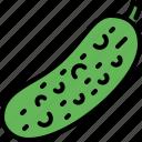 cucumber, vegetable, organic food, healthy, vegetarian, vegan, nutrition