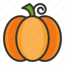 food, healthy, pumpkin, vegan, vegetable icon