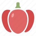 bell pepper, fresh, ingredient, organic, paprika, pepper, vegetable icon