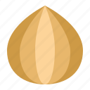 food, healthy, onion, vegan, vegetable icon