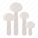 enoki, enoki mushroom, food, healthy, mushroom, vegan, vegetable icon