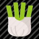 fennel, food, healthy, vegan, vegetable icon