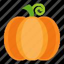 food, healthy, pumpkin, vegan, vegetable icon