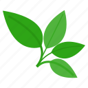 food, healthy, herb, kitchen, vegetable, vegetarian icon