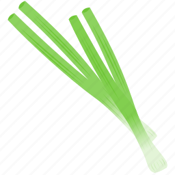 cebollin, chive, cooking, green icon
