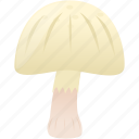 cooking, food, mushroom, plain icon
