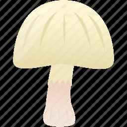 cooking, food, mushroom, plain icon