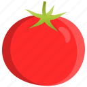 cooking, food, fruit, red, tomato, vegetable icon