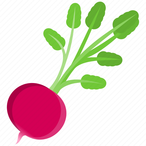 cooking, food, pink, vegetable icon