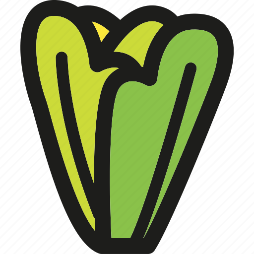 food, healthy, lettuce, organic, vegan, vegetable, vegetables icon