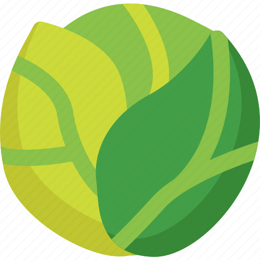 cabbage, food, healthy, lettuce, organic, vegetable, vegetables icon