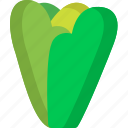 food, healthy, lettuce, organic, vegan, vegetable, vegetables icon