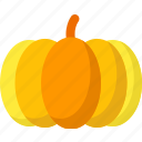 food, halloween, healthy, organic, pumkin, vegetable, vegetables icon