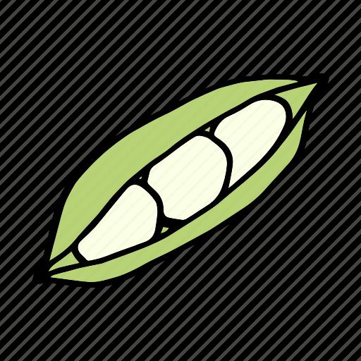 bean, cook, food, green bean, ingredient, vegetable, veggie icon