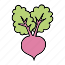beet, beetroot, cook, food, ingredient, vegetable, veggie icon