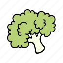 broccoli, cook, food, greens, ingredient, vegetable, veggie icon