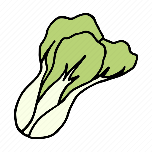 cook, food, ingredient, pakchoi, spinach, vegetable, veggie icon