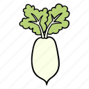 cook, daikon, food, ingredient, radish, vegetable, veggie icon