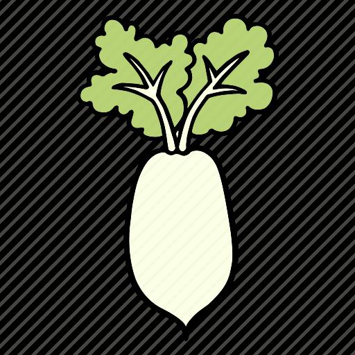 cook, daikon, food, ingredient, radish, vegetable, veggie icon
